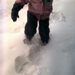 25cm de neve