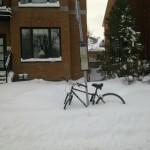 Vamos pedalar?