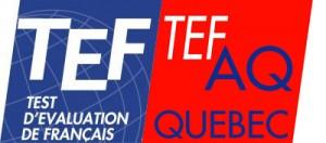 TEF_tefaq